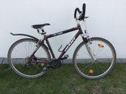 Giant Crossbike Fahrrad