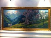 Großes Alpen Panorama in goldenem