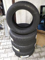 Dunlop Winter Sport