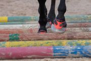 Hufschuhe Floating Boots