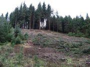 Wald / Wiese / Ackerland