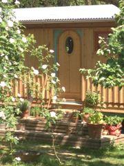 Grosser Garten für