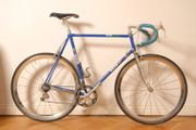 Gios Compact Plus Evolution mit