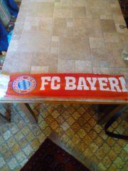 FC Bayern Fan