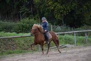 Lind vom Birkenhof-