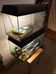 Aquarium 30 Litr