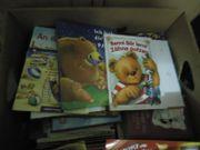 1 Karton Bücher