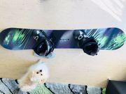 Neues Snowboard *mit