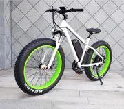 E-Bike Elektrofahrrad Pedelec Vorführrad Mountainbike