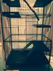 Ratten - Frettchen oder Chinchilla Käfig