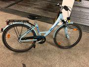Pegasus Avanti Aluminium Mädchen Fahrrad