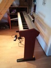 Hemingway dp201 E-Piano