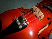 Geige Violine neuwertig
