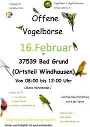 offene Vogelbörse in 37539 Bad