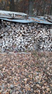 Brennholz Buche und Eiche