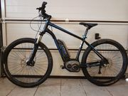 E-Bike Mountainbike -