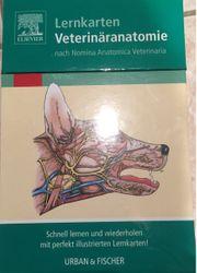 Lernkarten Veterinäranatomie