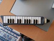 Melodica Hohner