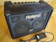 PA Beschallungsystem ROLAND KC-110 30Watt Stereo
