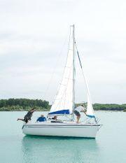 Segelboot Viko 20 mit Anhänger -