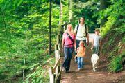 Wandern Familienurlaub Bayerischer