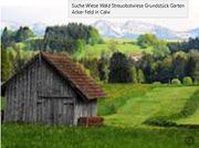 Suche Wiese Streuobstwiese Wald Acker