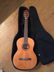 Martinez Gitarre MCG-