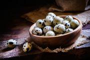 Frische Wachtel Eier