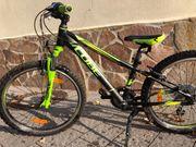 CUBE Kid 240 Mountainbike Race