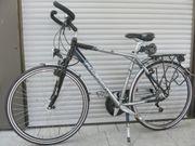 PEGASUS PREMIO SL Herrenrad Fahrrad