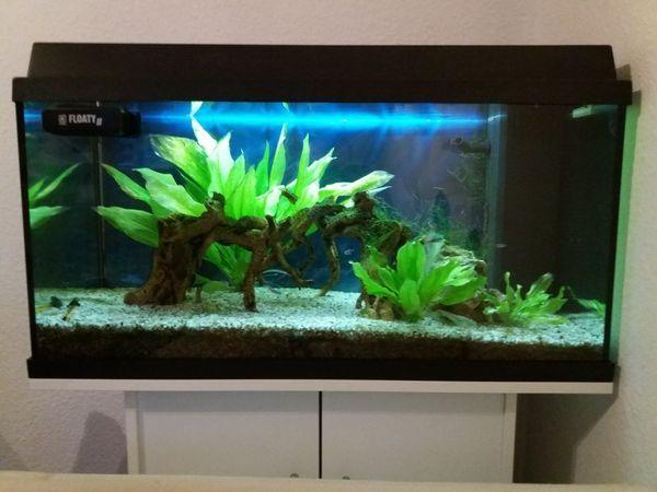 juwel aquarium kaufen juwel aquarium gebraucht. Black Bedroom Furniture Sets. Home Design Ideas