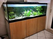 Aquarium mit Unterbau