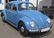 Sehr schöner gepflegter VW Käfer