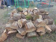 Brennholz Stammholz zum selber Spalten