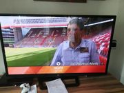 Fernseher LG 65PA6500