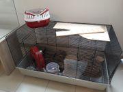 Käfig für Hamster oder Meerschweinchen