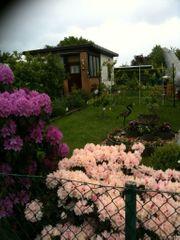 Schönen Pachtgarten im Laatzen