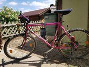 Fahrrad Giant Mountainbike