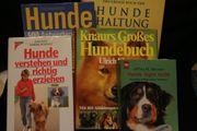 Hunde-Fach-Bücher