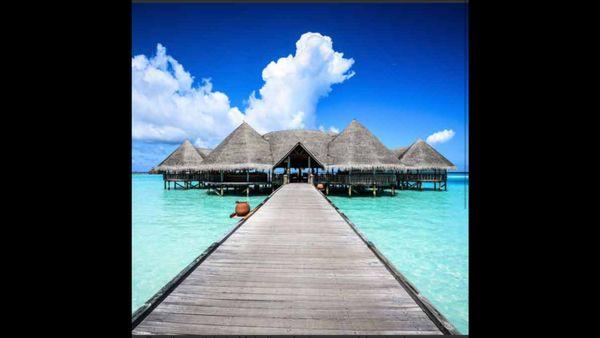 suche reisebegleitung