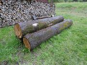 Buche Eiche Brennholz