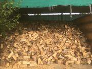 Brennholz Buche trocken 33cm