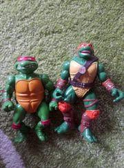 Zwei alte Turtles