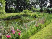 Garten / Gartengrundstück / Freizeitgelände