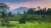 Indonesien Reise Urlaub Private Touren