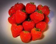 10 Stück Erdbeere