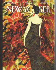 New Yorker Magazine Jahrgang 2017