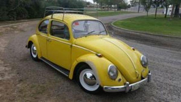 VW Käfer in Super Zustand