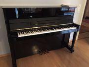 Klavier Kawei CX