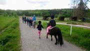 Kinder Reitunterricht HIPPOLINI Ponyreiten